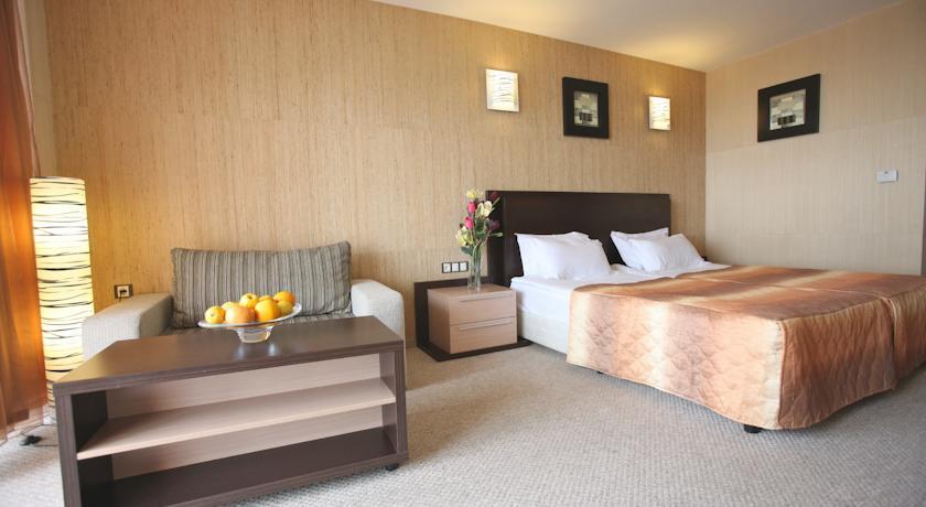 Хотел Мариета Палас10